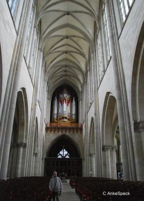 DSC_0232magdeburg-001