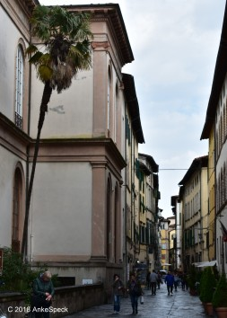 Gasse in Lucca